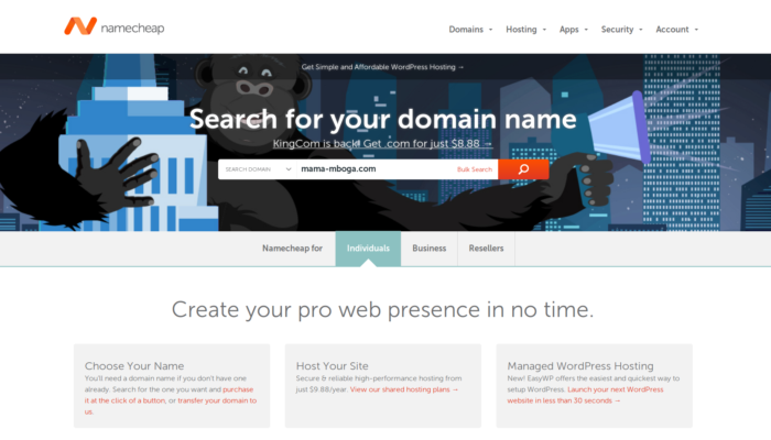how to register a domain name for your WordPress blog at Namecheap