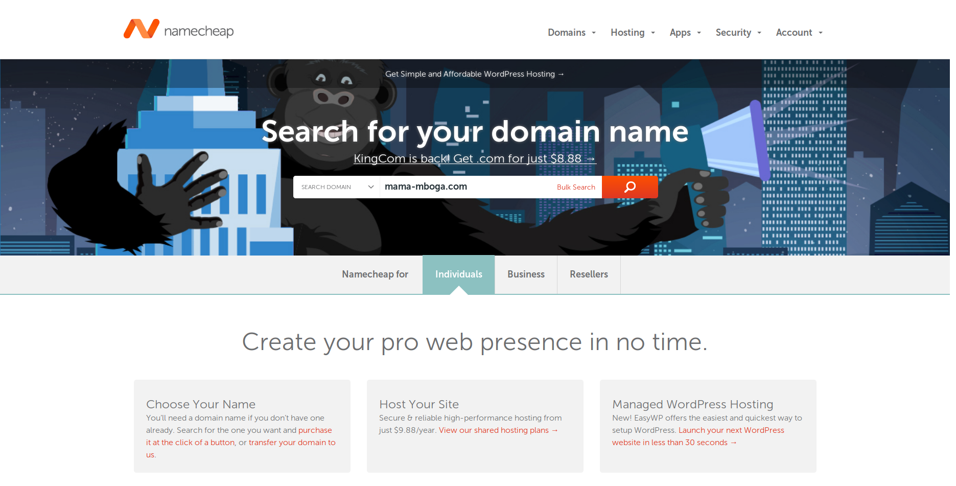 how to add domain name to wordpress
